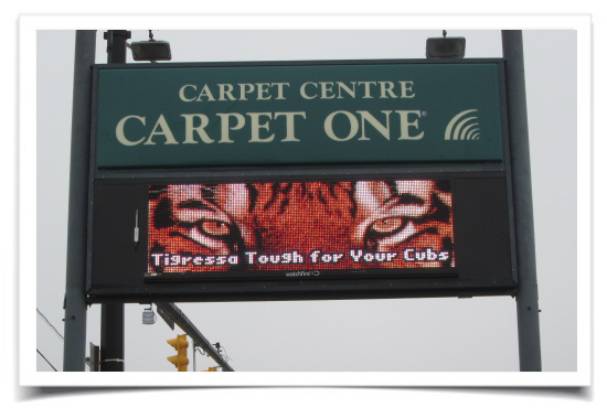 Carpet One Signage by LAAD Sign and Lighting Akron OH